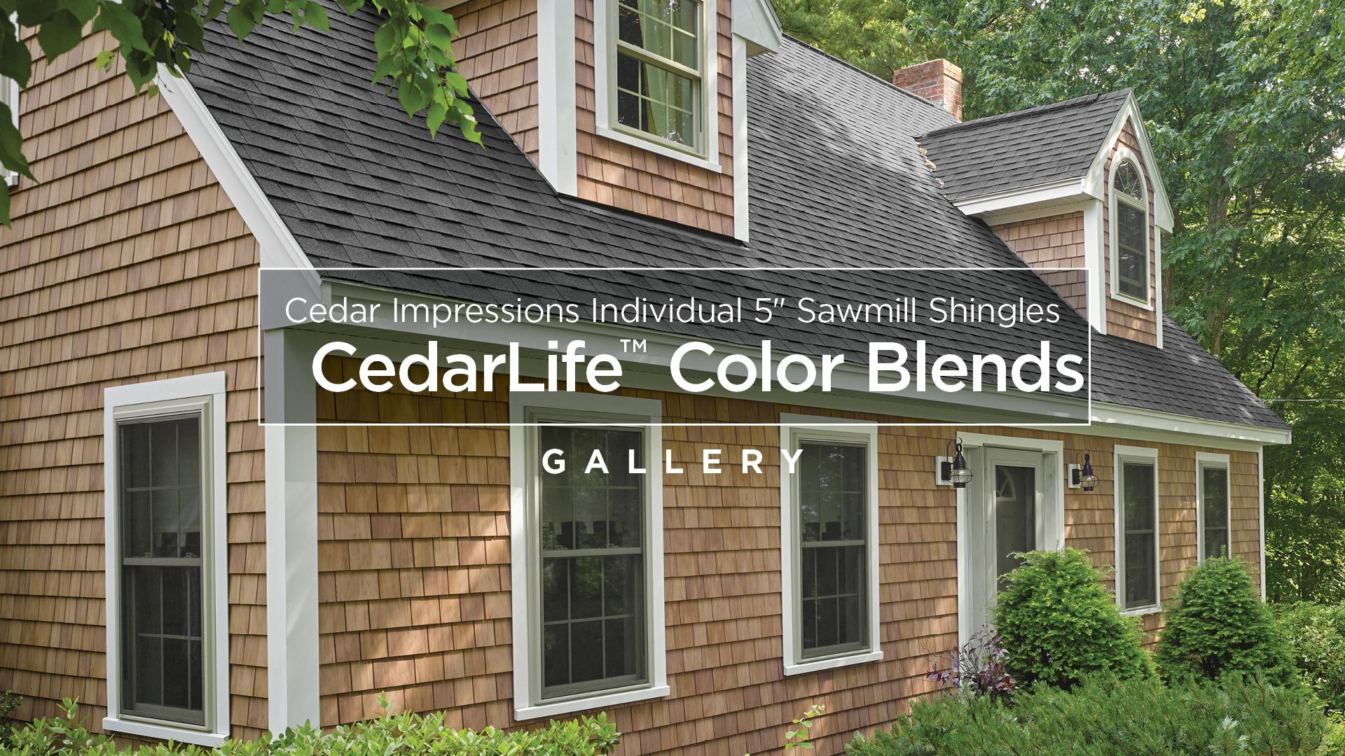Cedar Impressions Individual 5 Quot Sawmill Shingles